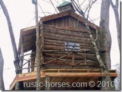 TreeHouse 048